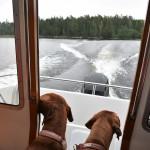 Nala och Vilda åker båt