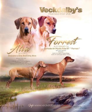 A - KULLEN  Alva & Forrest     11/8 -17
