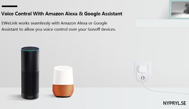 support google home wifi socket