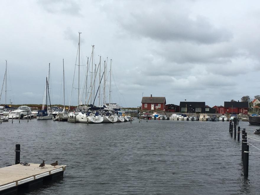 LIte blåsigt och grått, men annars lugnt och fridfullt i hamnen; från den 1 oktober.