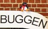 Pingvinbuggen 2012 14