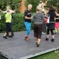 Dansdagen i Vällingby 2013 2013-08-24 17-28-27