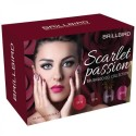 BB Scarlet Passion Brush&Go GEL KIT
