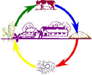 Bild lånad från http://www.biodynamisk.se/ där du gärna kan läsa mer