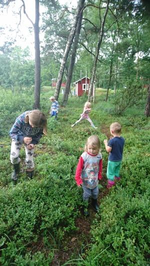 Undebart hälsosamma barn som njuter av naturens godis - blåbär!