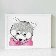 Kattbjörn