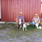 To av de norske hundene