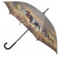 Paraply - Vilda hästar