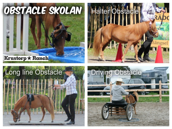 I Sverige tävlar vi normalt i 3 olika obstacle-klasser :) Halter Obstacle, där man leder hästen i grimma. Long line Obstacle, då man tömkör hästen. Och Driving Obstacle, där man kör hästen med en 2-hjulig rockard. Och som undantag så har vi Speed-Obstacle som är en Driving-Obstacle som går på tid.