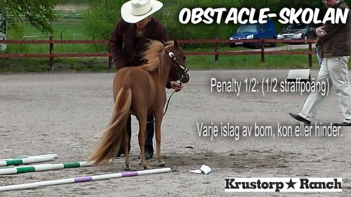 1/2 (ett halvt) straffpoäng för varje litet islag :) Men 19 små islag är fortfande bättre än att hästen går sin väg på ground tie =D