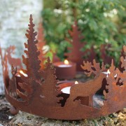 Ljusstake hjort i skog
