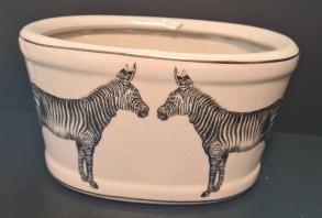 Ytterkruka Zebra -