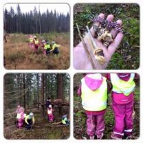 Varje vecka gör vi utflykter, ofta till skog och naturområden