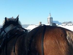 Tindra ser ut över Røros, foto: Jennie Andersson