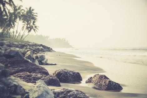 Helande resa Indien med Ania Munay
