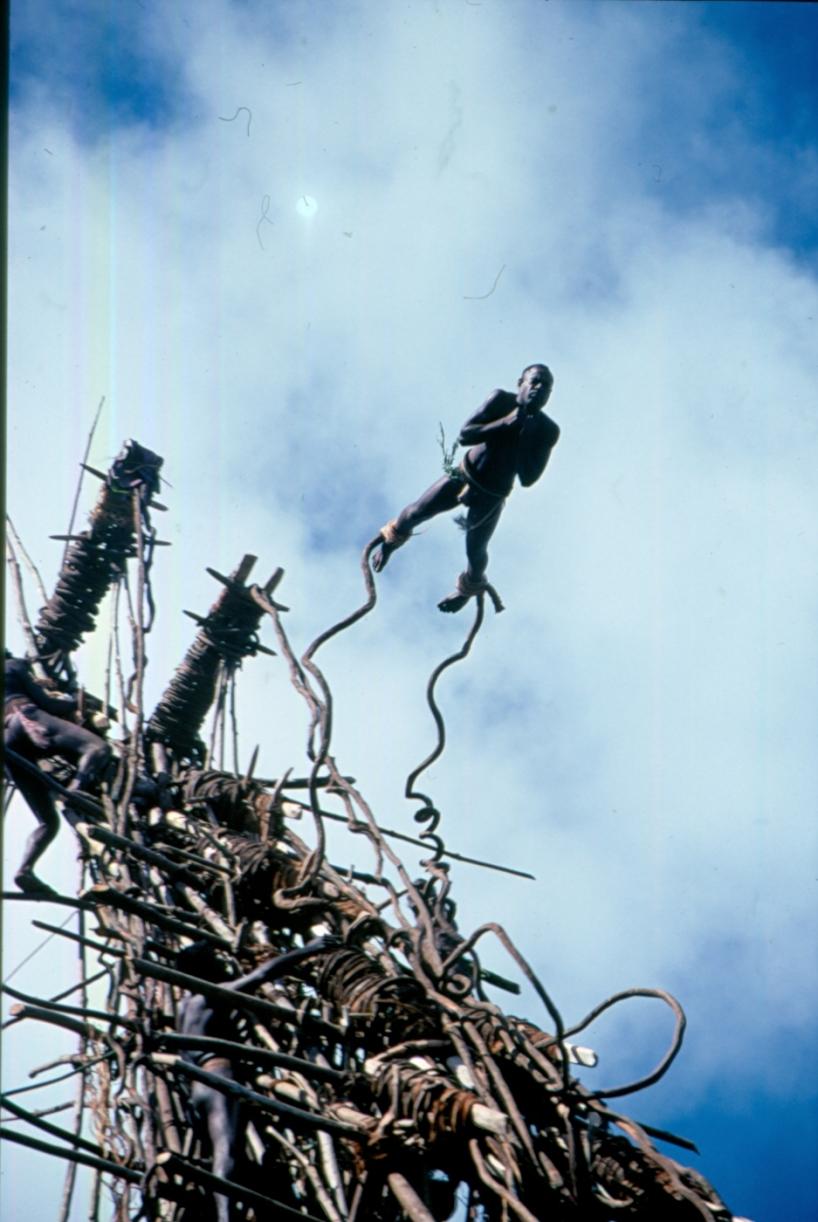 Från en inspelning på Vanuatu där det var skördetider och land diving utfördes bland befolkningens män. Sebra Film var en av få filmteam som fick filma denna ovanliga ritual. Vanuatu står i fokus idag då befolkningen tvingats evakuera på grund av ett väntat vulkanutbrott.