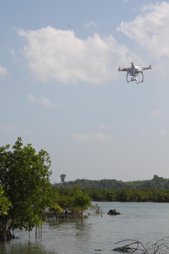 Filmning med drönare av mangrove i Burma.