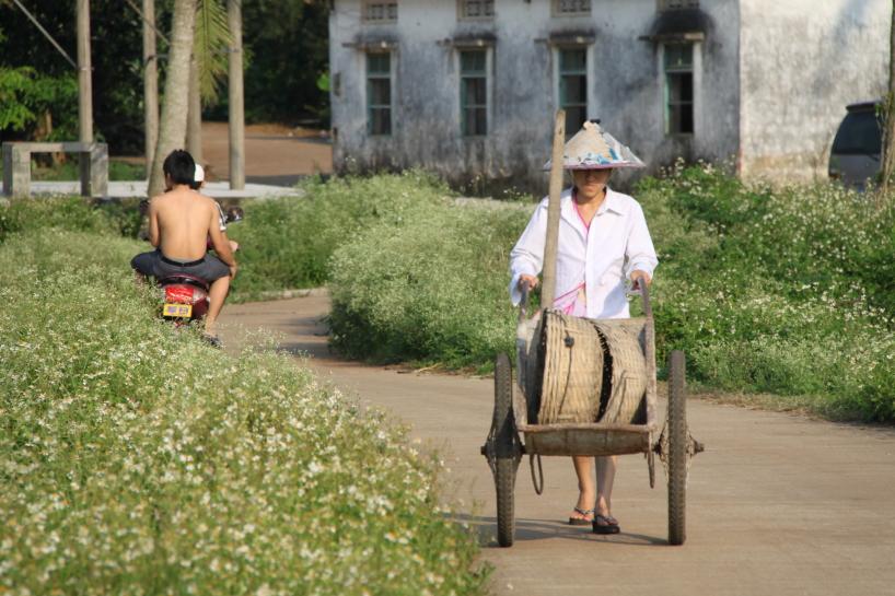 Kina, från inspelningarna av The Green Planet.