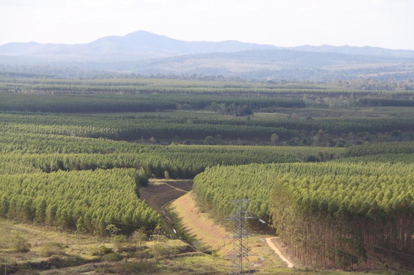 Brasilien 2012 under inspelningarna av The Green Planet.