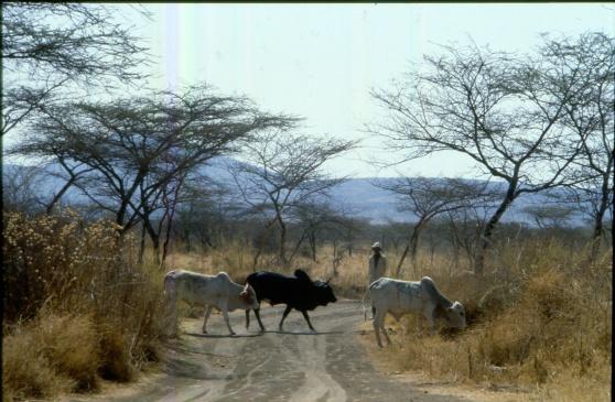 Etiopien.