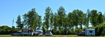 Campingtomter intill björkdunge