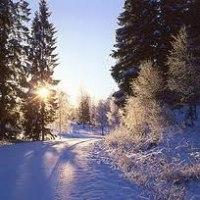 Äntligen vinter!