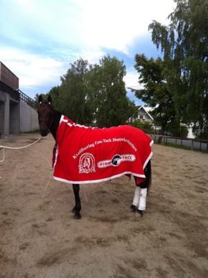 Claudia BR vinnare av Derbystoet 2014 i Norge..