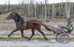 2016-04-22 Excelebration FotoArvikafotografen.com/ Bengt Andersson