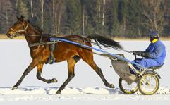 2017-02-14 Pippi Roc / Foto Arvikafotografen/Bengt Andersson