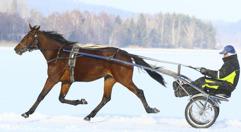 2017-02-17 Frozen Elsa / Foto Arvikafotografen/Bengt Andersson