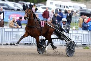 Twister Bi skräller i Oslo Grand Prix