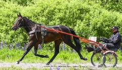 2017-06-20 Great Winner / Foto Arvikafotografen/Bengt Andersson