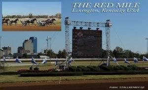 Travbanan The Red Mile i Lexington, kommer jag att besöka även i år.