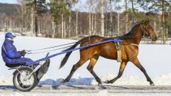 2018-03-16 Fridolina Palema/Foto Arvikafotografen Bengt Andersson
