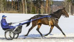 2018-03-16 Svecak Palema/Foto Arvikafotografen Bengt Andersson