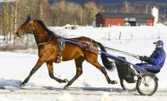 2018-03-16 Yarrah Winner/ Foto Bengt Andersson Arvikafotografen