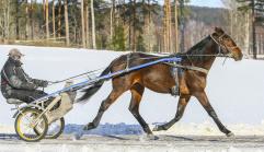 2018-03-16 Symphonic Katja/Foto Bengt Andersson Arvikafotografen