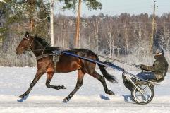 2021-01-16 Peter Pan Foto Bengt Andersson/Arvikafotografen