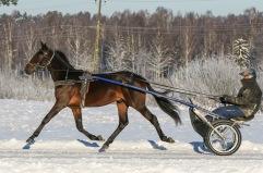 2021-01-16 Max Eagle F.T. Foto Bengt Andersson/Arvikafotografen