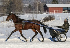 2021-01-16 Jacques Mearas Foto Bengt Andersson Arvikafotografen