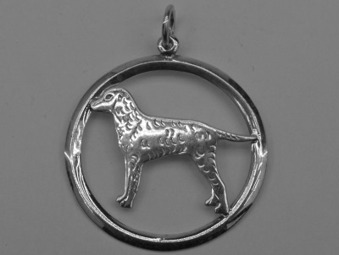 Curly Coated Retriever hängsmycke med cirkel - Silver