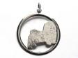 Bichon Havanais hängsmycke med cirkel silver