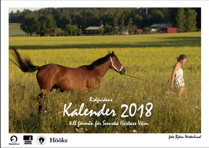 ridguidens kalender 2018, sid 1