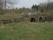 12B Osby Drivebro C.a 5,7km NNO Osby kyrka