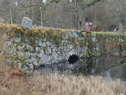 38B Osby Kulleröd kvarn c.a 7,2km NV Osby kyrka