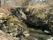 10A Uddevalla Grohed C.a 1,6km SSO Lerbomotet