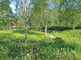 07A Östhammar Johannisfors C.a 3,5km SO Forsmarks kyrka
