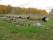 02B Tingsryd Blidingsholm C.a 4,4km N  Ryds kyrka