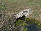 39A Mörbylånga Mellby C.a 2,9km N Segerstads kyrka bro 1