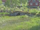 18B Vetlanda Götestorp C.a 9,4km N Åseda kyrka